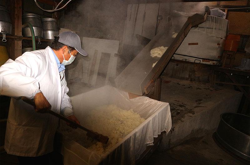 全ての工程に使われる蒸米